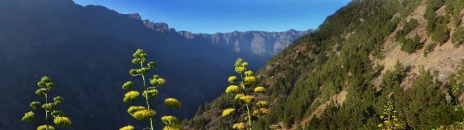 Mirador de Cancelita de La Palma