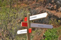 las-tricias-wanderwege-buracas