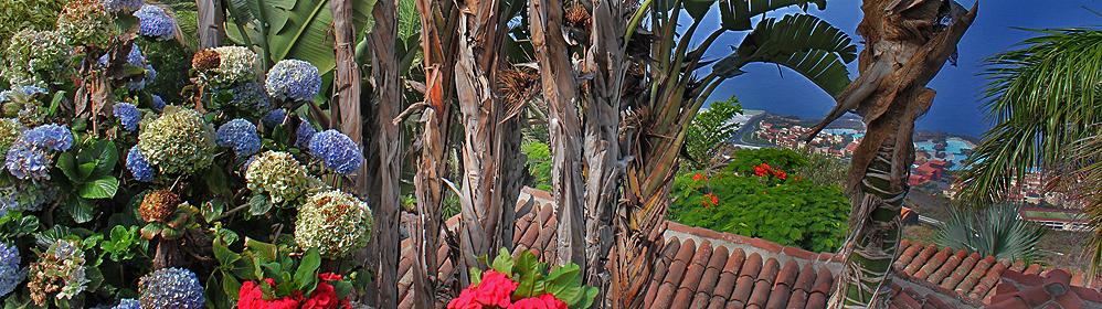 Los Polveros - Casa vacacional, Fuencaliente | La Palma Travel