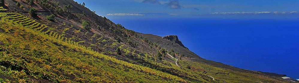 Ferienhaus, Ferienwohnung, Finca - Los Quemados - La Palma
