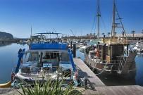 puerto-de-tazacorte-ausflugs-boote-excursiones-al-mar