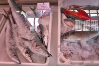 puerto-de-tazacorte-frischer-fisch-pescado-fresco-fresh-fish