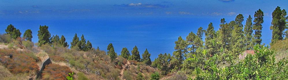 Casa Sinfonia - La Palma Travel