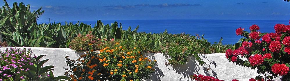 Casita Isabel - La Palma Travel
