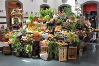 markthalle-santa-cruz-de-la-palma-la-recova-mercado-obst-gemuese-fruta-verdura