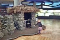 museo-arqueologico-benahoarita-behausung