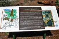 museo-arqueologico-benahoarita-los-llanos