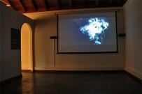museo-del-puro-palmero-zigarren-filmvorfuehrung