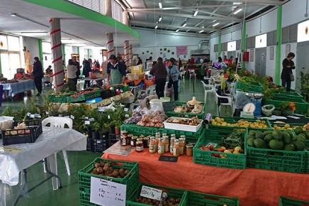 puntallana-mercado-municipal-markt-halle