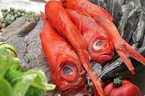 restaurante-taberna-del-puerto-de-tazacorte-la-palma-expositor-pescado-04