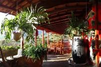 tasca-catalina-restaurante-tapas-el-paso-la-palma-terraza-bernd-roth