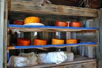 el-duende-del-fuego-los-llanos-de-aridane-la-palma-queso-de-cabra-palmero-ziegenkaese