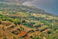 agrarlandschaft-nord-westen-la-palma