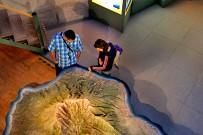centro-de-visitantes-caldera-de-taburiente-el-paso-la-palma-besucherzentrum-insel-relief