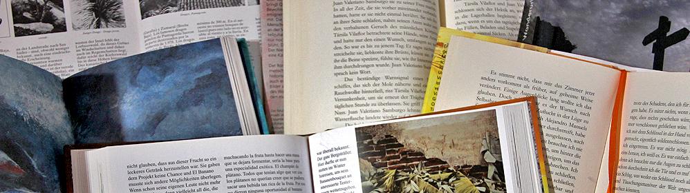 Ines Dietrich: Geheimnisse der Insel La Palma. Reiseführer durch 12 Monate - La Palma Travel