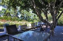 restaurante-la-mata-llano-negro-garafia-la-palma-terraza02