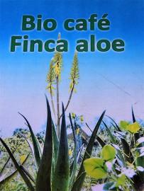 bio-cafe-finca-aloe-las-tricias-buracas-la-palma-09