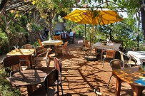 bio-cafe-finca-aloe-las-tricias-buracas-la-palma-14