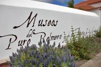 parque-de-los-alamos-san-pedro-brena-alta-la-palma-museo
