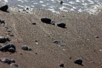 strand-schwarzer-sand-la-palma-steine-wasser-meer