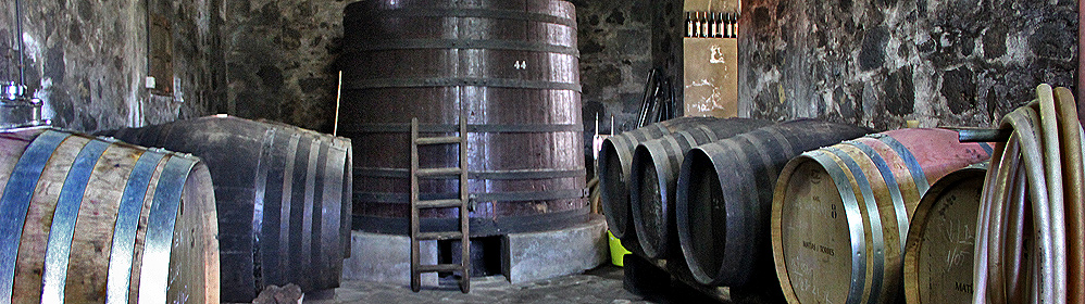 Bodegas & Local Producers - La Palma Travel