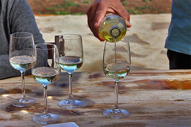 15-bodega-tagalguen-garafia-la-palma-vino-wein