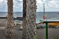 kiosco-salemera-playa-mazo-la-palma-terrasse-blick