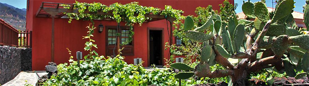 Casa Museo del Vino Las Manchas - La Palma Travel