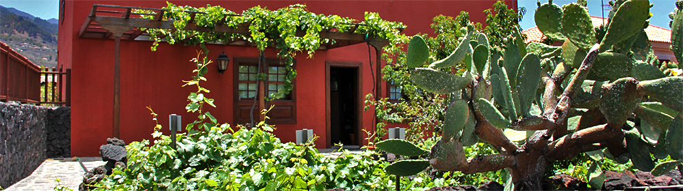 Weinmuseum - La Palma Travel