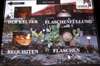 museo-del-vino-palmero-wein-museum-las-manchas-la-palma08
