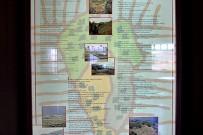 museo-del-vino-palmero-wein-museum-las-manchas-la-palma16