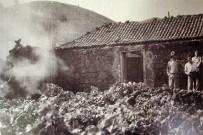 museo-del-vino-palmero-wein-museum-las-manchas-la-palma23
