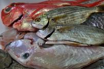 Frischer Fisch am Meer
