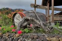 restaurante-bodega-la-casa-del-volcan-fuencaliente-la-palma-barril