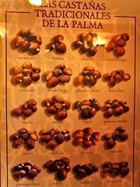restaurante-bodega-la-casa-del-volcan-fuencaliente-la-palma-castanas-variedades