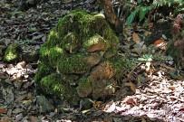 refugio-del-pilar-pared-vieja-wandern-la-palma-steinhaufen