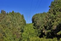 refugio-pared-vieja-wandern-la-palma-hochspannungsmasten