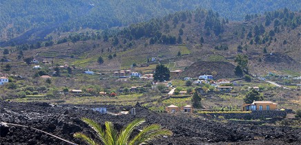 las-machas-wein-lava-meer-bergblick-la-palma