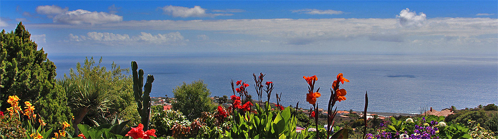Tres Pinos - La Palma Travel