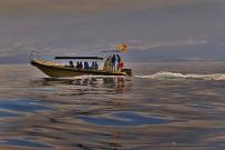 Inia-bussard-puerto-de-tazacorte-boots-ausfluege-wale-delfine