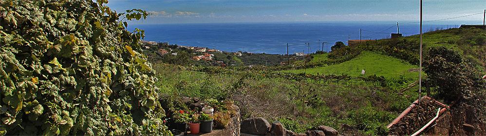 El Abuelo - La Palma Travel