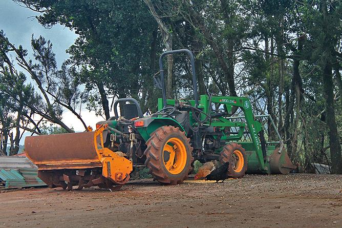 luna-de-awara-garafia-tractor-y-gallinas-sueltas