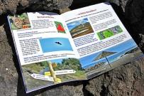 restaurant-empfehlungen-la-palma-travel-guide-info-flora-fauna-wandern
