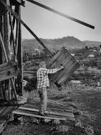 migo-gofio-trigo-museo-las-tricias-garafia-la-palma-historisches-foto-2
