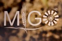 migo-gofio-trigo-museo-las-tricias-garafia-la-palma-logo
