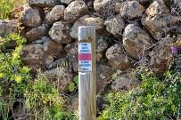 wanderung-sendero-dragos-salvatierra-garafia-la-palma-25-wanderweg