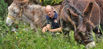 esel-wandern-burros-de-la-luz-la-palma-garafia-65-richard-juanita-felix