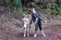 esel-wandern-burros-de-la-luz-la-palma-juanita-uka