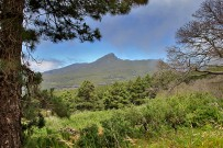 las-cuevas-caminata-el-paso-virgen-del-pino-centro-visitantes-la-palma-100