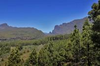 las-cuevas-caminata-el-paso-virgen-del-pino-centro-visitantes-la-palma-111